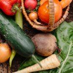 夏バテを防止できる食材は?栄養素や効果のある食品を摂り入れて乗り切ろう