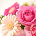 ホワイトデーに花を贈るならオススメは?嬉しいプレゼントとは