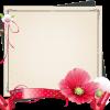 色紙に写真を使ったレイアウト方法4選!コツやアイデアも紹介!