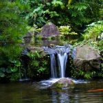 御前崎の周辺を観光するなら、小さい子供も思い切り楽しめる場所はココ!②